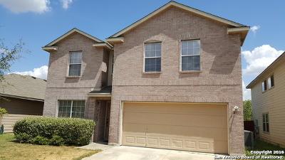 San Antonio Single Family Home New: 2630 Gato Del Sol