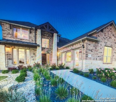 New Braunfels Single Family Home New: 1719 Village Springs