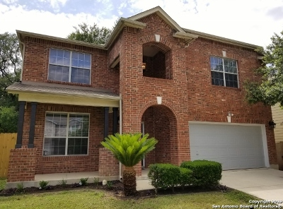 San Antonio Single Family Home New: 16831 Basin Oak
