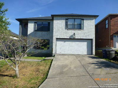 San Antonio TX Single Family Home New: $169,900