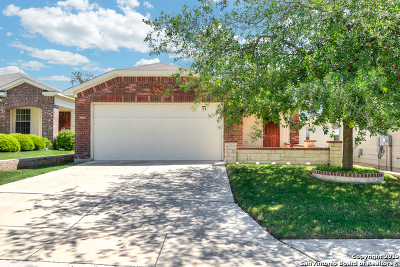 Bexar County Single Family Home New: 12765 Lazy Dove