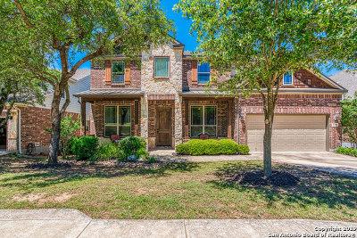 San Antonio Single Family Home New: 25519 Wentink Ave