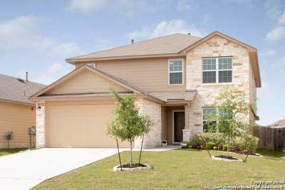 Bexar County, Medina County Single Family Home New: 14021 Shivers Cove