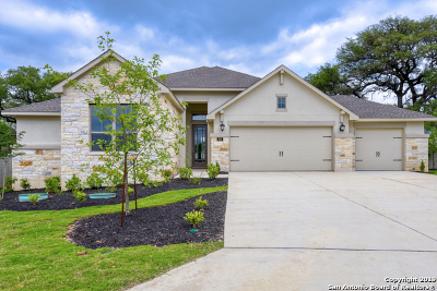 New Braunfels Single Family Home New: 619 Coral Berry