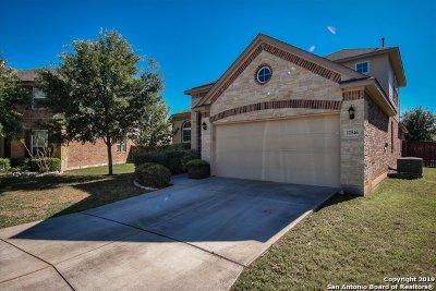 Bexar County, Medina County Single Family Home New: 12546 Prude Ranch