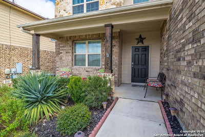 Cibolo Single Family Home New: 268 Cansiglio