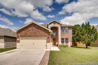 San Antonio Single Family Home New: 29035 Gooseberry