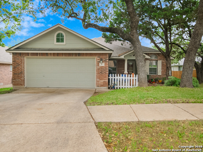 San Antonio Single Family Home New: 4 Twinpost