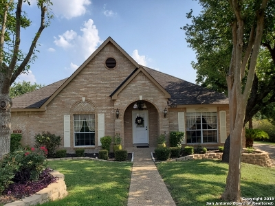 San Antonio Single Family Home New: 1003 Verde Vista Dr