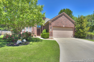 Schertz Single Family Home New: 712 Moss Wood