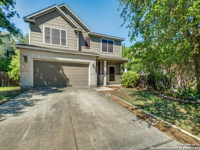 San Antonio Single Family Home New: 10807 Sierra Ridge Dr