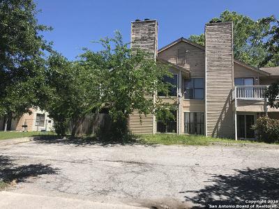 San Antonio Multi Family Home New: 7528 Windsor Oaks