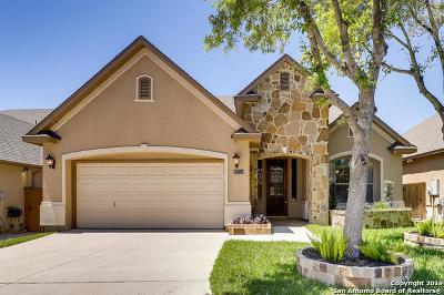 San Antonio Single Family Home New: 18211 Dogwood Path