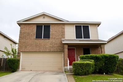 San Antonio Single Family Home New: 322 Silver Bit