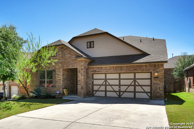 Single Family Home New: 21227 Cinch Run