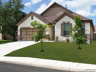 San Antonio Single Family Home New: 7527 Daniel Krug