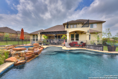 San Antonio Single Family Home New: 26230 Dark Horse Ln