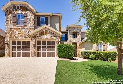 San Antonio Single Family Home New: 1235 Ashbury Bay