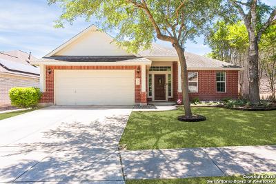 San Antonio Single Family Home New: 30 Atwell Park