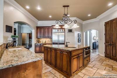 San Antonio TX Single Family Home New: $995,000