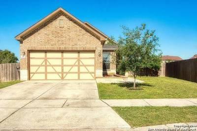 San Antonio TX Single Family Home New: $182,000