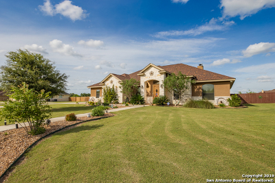 Floresville Single Family Home For Sale: 113 S Abrego Crossing