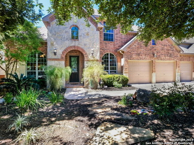San Antonio Single Family Home New: 3519 Puesta De Sol