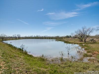 Atascosa County Farm & Ranch For Sale: 00000 Fm 1333