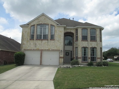San Antonio Single Family Home New: 1206 Alpine Pond