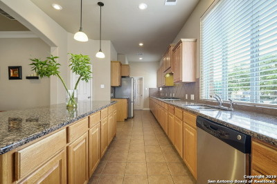 San Antonio Single Family Home New: 26003 Torena Loop