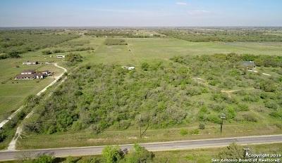 Atascosa County Farm & Ranch For Sale: 855 Mc Connell Rd