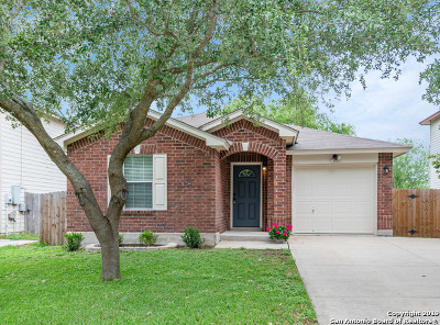 New Braunfels Single Family Home Active Option: 3972 Trinity Trail