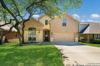 San Antonio Single Family Home New: 25814 Torena Loop