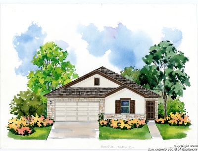 New Braunfels TX Single Family Home New: $249,040