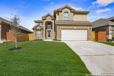 San Antonio TX Single Family Home New: $280,900