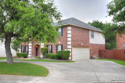 San Antonio Single Family Home New: 417 Turtle Hill