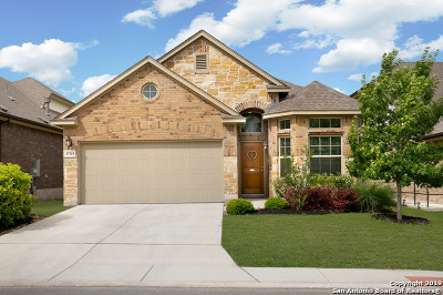 San Antonio Single Family Home New: 17115 Moscato
