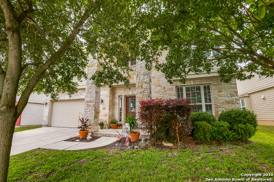 Cibolo Single Family Home New: 437 Turnberry Way