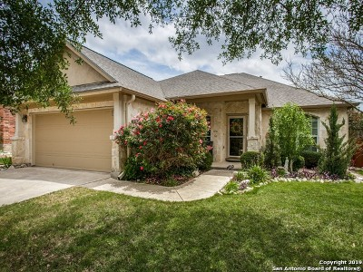 San Antonio Single Family Home New: 3230 Gazelle Range