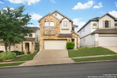 San Antonio Single Family Home New: 21519 Dion Village