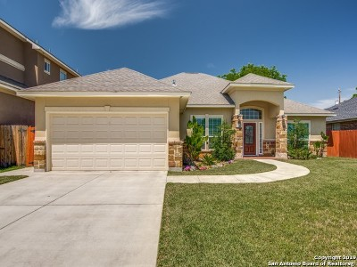San Antonio TX Single Family Home New: $269,000