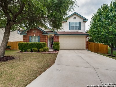 Helotes Single Family Home New: 11202 Ocate