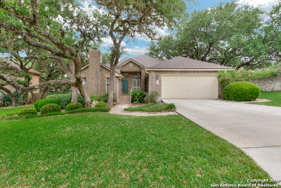 San Antonio Single Family Home New: 20115 Sierra Oscura