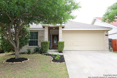 San Antonio TX Single Family Home New: $217,000