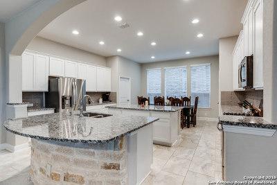 San Antonio Single Family Home New: 22255 Akin Doe