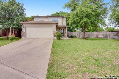 San Antonio Single Family Home New: 5347 Spring Day