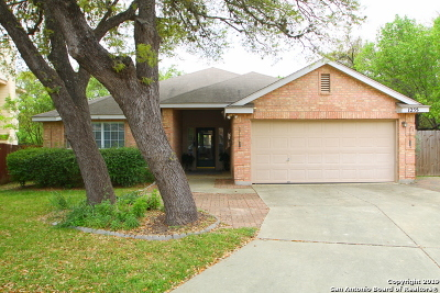 San Antonio Single Family Home New: 1255 Lynx Bend