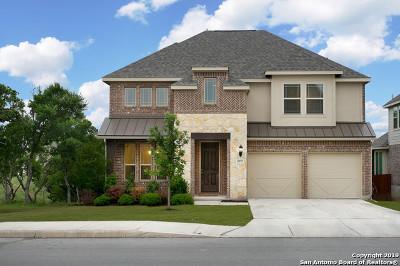 San Antonio TX Single Family Home New: $299,990