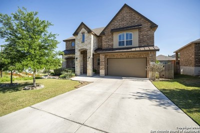Stone Oak Single Family Home For Sale: 23910 Alpine Lodge
