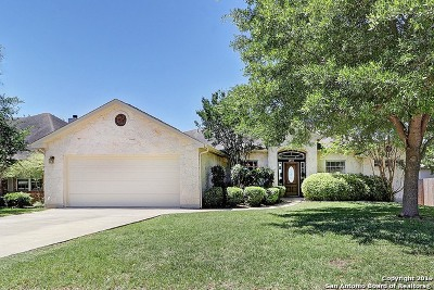 New Braunfels Single Family Home New: 2054 Stonecrest Path